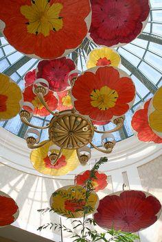 Umbrella Feature at the Bellagio in LasVegas, Nevada---     So Pretty