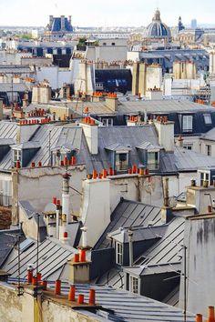 Vue superbe sur les toits et les cheminées de Paris