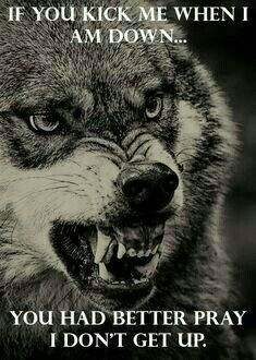 Wise Quotes, Inspirational Quotes, Art Quotes, Tattoo Quotes, Motivational Posts, Qoutes, Boxe Fight, Lone Wolf Quotes, Wolf Stuff