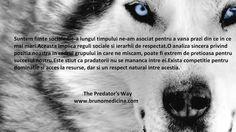 Pradatorii nu se mananca intre ei.Exista competitie pentru dominatie si acces la resurse, dar si un respect natural intre acestia.  http://www.traininguri.ro/predator-selling/ https://www.facebook.com/bruno.medicina.1?fref=ts http://www.brunomedicina.com/