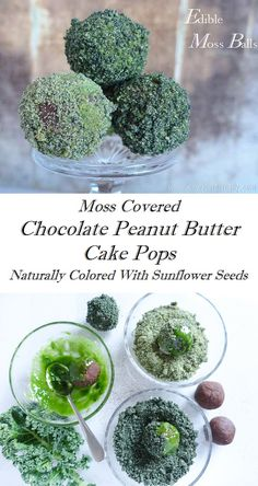 Edible Moss Balls – Chocolate Peanut Butter Cake Pops With Natural Green Food Coloring Natural Food Coloring, Green Food Coloring, Moss Cake, Love Food, A Food, Sweet Recipes, Healthy Recipes, Cake Cover, Food Trends