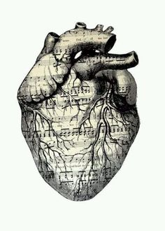 """Paper, Assemblage / Collage """"my fond heart"""" holy crap, wish I had the guts to get an anatomical heart tattoo Art Tumblr, Herz Tattoo, Anatomical Heart, Heart Art, Music Heart, Art Plastique, Music Is Life, Love Art, Oeuvre D'art"""