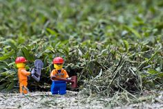 Cool photos with Legos