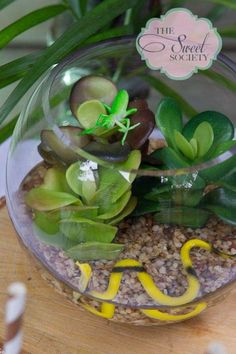 Snakes, lizards, alligators, Reptiles Birthday Party Ideas | Photo 8 of 20 | Catch My Party