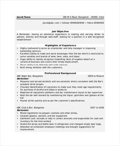 Carpenter Resume Templates Impressive 11 Carpenter Resume Templates  Free Printable Word & Pdf  Sample .