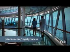 Regal Princess SeaWalk: Glass-Bottomed Walkway