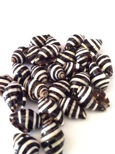 zebra stripe shells | tribal