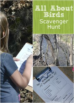 All About Birds Scavenger Hunt from Osborne McElwee ~ Creative Family Fun Nature Activities, Animal Activities, Learning Activities, Kids Learning, Activities For Kids, Outdoor Activities, Educational Activities, Teaching Kids, Scavenger Hunt For Kids