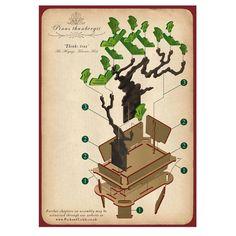 flat packed pine bonsai tree kit by pack & tickle | notonthehighstreet.com