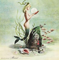 ♡ Mermaids :: Illustration by Ren Wicks, 1964 ♡