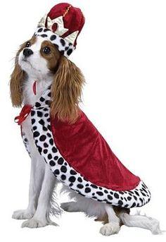 Royal King dog costume - size Small