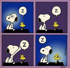 Snoopy 'steals' some zzzzz's from Woodstock.