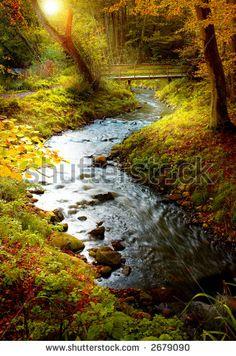 Photographie Cours D Eau Nature | Shutterstock