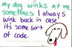 my dog winks at my sometimes. I always wink back some sort of code #postsecret
