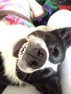 No, stop, don't make me laugh!
