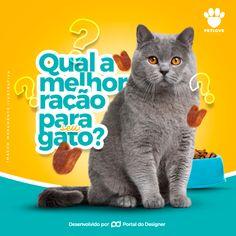 Social Media - PetShop on Behance Ads Creative, Creative Artwork, Graphic Design Brochure, Logo Design, Pet Shop, Writer Logo, Pet Branding, Fb Banner, Dog Logo