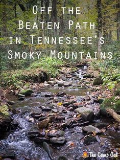 Off the beaten path in Tennessee's Smoky Mountains - The area surrounding Tennessee's Smoky Mountains has a touristy reputation, but just 30 minutes from the tourist town of Gatlinburg, there's a small town called Cosby that has a lot to offer. Here are a few things we discovered while we were camping near Cosby.