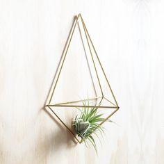 Wall planter Facet -  DIY