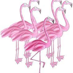 'Flamingo' by Sascha Kläger Flamingo, Illustration, Friends, Nice Asses, Flamingo Bird, Flamingos, Illustrations