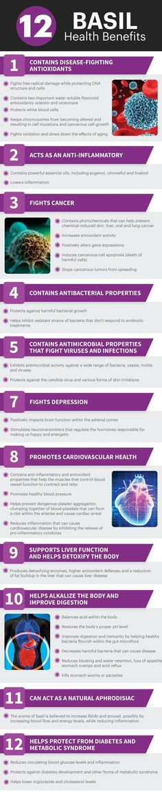 Health Benefits of Using Basil