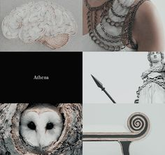 Athena is the Goddess of Wisdom and is Zeus' daughter. She emerged from his skull. Her Roman counterpart is Minerva. Greek And Roman Mythology, Greek Gods And Goddesses, Norse Mythology, Athena Aesthetic, Athena Goddess, Minerva Goddess, Roman Gods, Legends And Myths, Hades And Persephone