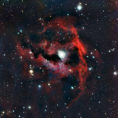 Seagull Nebula: Amazing crimson beauty peeks out of the cosmos