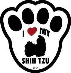 The Love of a Shitzu | hope this note finds you and your family doing well. Take care!