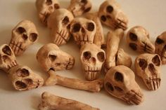 Miniature Skulls and Bones made by arachnea on craftster. This is an inspiration pic. I would love to have some miniature skulls and bones to use in assemblages.