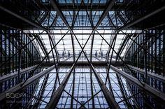 Skyward in the Atrium II by gmcauliffe