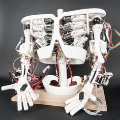 Roboy team aims to build robot utilizing 3D printed components and off the shelf electronics.  Limb articulation is controlled via elastic cables.  Lessons learned from projects like this can open new opportunities for applications in prosthetics and assisted movement devices.