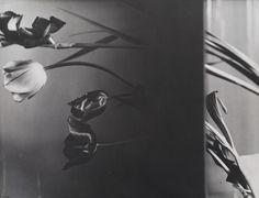 Natura morta, 1931. - (Florence Henri, Galleria Martini & Ronchetti)