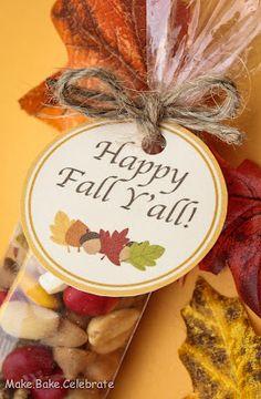 Make your own fall trail mix! Originally found on Make Bake Celebrate blog