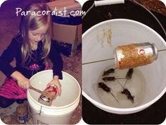 Paracordist Creations LLC: Building the better mousetrap not for the faint of hearT! Survival Prepping, Emergency Preparedness, Urban Survival, Getting Rid Of Mice, Diy Pest Control, Zombie Apocalypse Survival, Mouse Traps, Tips & Tricks, Rodents