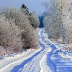 ***White winter road (Lithuania) by RE~gi~NA