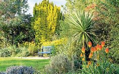 Designing the future: by thinking about the function of our gardens, John Brookes opened up limitless possibilities. He introduced us to the...