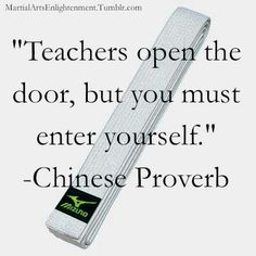 Teachers open the door, but you must enter yourself ~ Chinese Proverb
