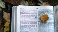 Bible Study on Galatians!  These Bible studies provide a time to grow in your knowledge of the word of God and a safe place to ask questions. The upcoming meeting dates will be on Tuesdays at 7:00pm for October 9 & 23, November 6, December 4 & 11.  Children are welcome.