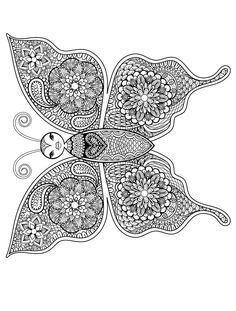 Butterfly insect art coloring page for adults pic