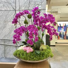 Pink orchid floral arrangement.