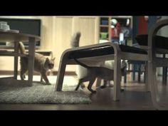Happy Inside - IKEA cats advert   http://nylongirls.jp/archives/2979829.html