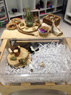 """Sensory Table: Animals in Winter. Science. Materials include reused cardboard and plastic tubes to create tunnels under the """"snow"""" for hibernation, non-fiction books on local animals, acorns and pine cones for food, stones, cut tree branches, and local animal beanies and finger puppets, and shredded paper for snow"""