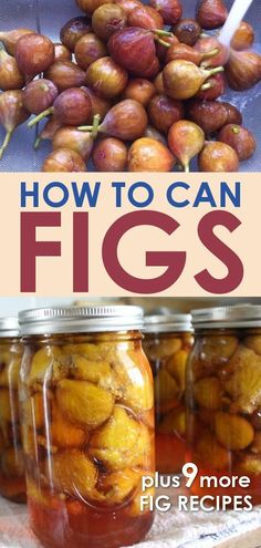 Canning whole figs is a simple process of water bath canning the fruit in syrup. Find out how to can whole figs - and what to do with them after they are canned! Get fig recipes for using all your fresh or canned figs! Fig Recipes, Real Food Recipes, Cooking Recipes, Coffee Recipes, Vegetarian Recipes, Recipies, Water Bath Cooking, Pressure Canning Recipes, Canning 101
