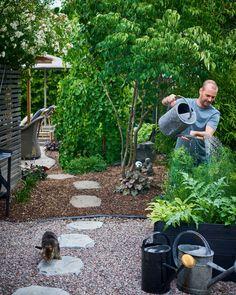 Japanese Garden Backyard, Japanese Garden Landscape, Balinese Garden, Asian Landscape, Asian Garden, Bamboo Garden, Garden Trellis, Wooden Garden, Easy Garden