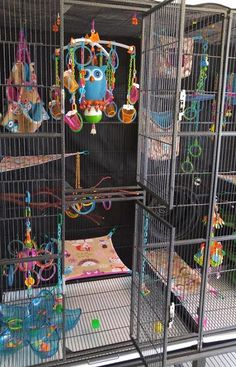 Tips for SUPER FUN cages!