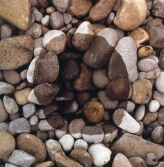 °Stone Art by Andy Goldsworthy Outdoor Sculpture, Outdoor Art, Sculpture Art, Metal Sculptures, Abstract Sculpture, Bronze Sculpture, Land Art, Andy Goldsworthy Art, Performance Artistique