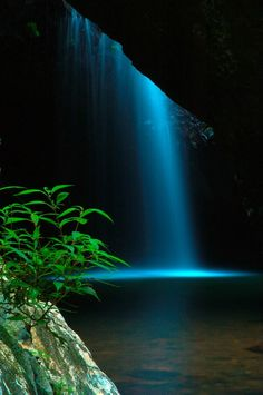 Springbrook National Park, Queensland, Australia, Wow I must see this place in Australia <3