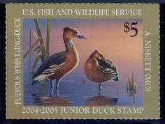 United States Fish & Wildlife Service. 2004-05 Junior Duck Stamp.