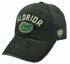 ff7efae8bab Florida Gators NCAA Top of the World- Culture Collection Adult OneFit Hat -Black