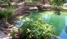 Photo Gallery |Asheville Aquaponics |Aquaponics South Florida