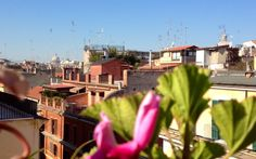 What a beautiful day in Rome. ( photos Made from our Panoramic Roof ) What A Beautiful Day, Rome, Madrid, Street View, Garden, Photos, Garten, Pictures, Lawn And Garden